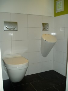 toilet-225x300